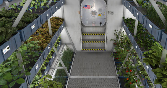greenhouse space station - photo #4